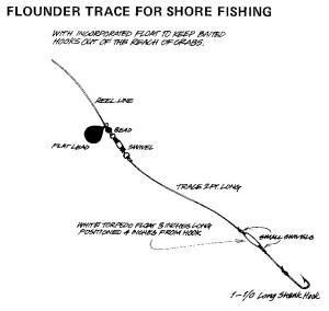 Flounder platichthys flesus for Flounder fishing rigs